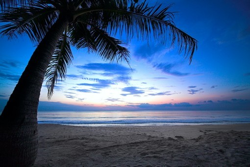 Фотообои Вечерний пляж (ID 3503)