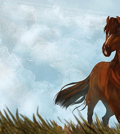 Фотообои Лошадь (ID 5302)
