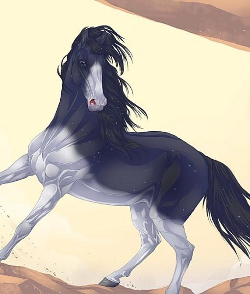 Фотообои Лошадь (ID 5303)