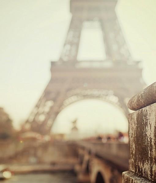 Фотообои Вид на Эйфелеву башню (ID 8213)
