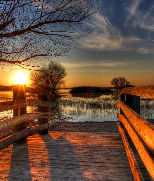 Фотообои Рассвет над лесным озером (ID 14814)