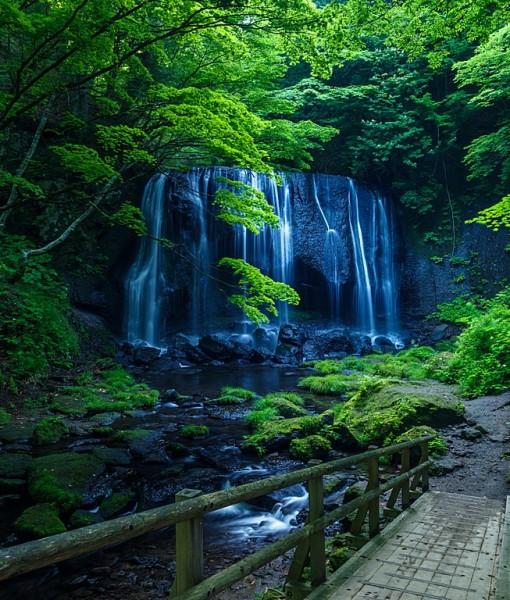 Фотообои Дорожка к водопаду (ID 14820)