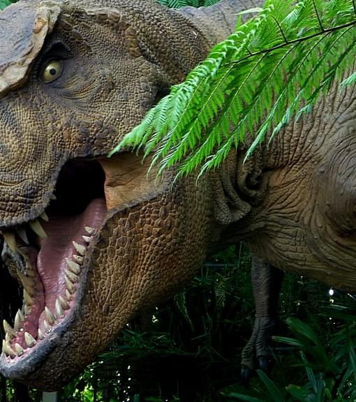 Фотообои Древний мир. Динозавры (ID 9219)