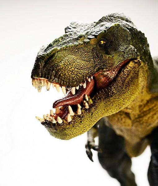 Фотообои Древний мир. Динозавры (ID 9220)