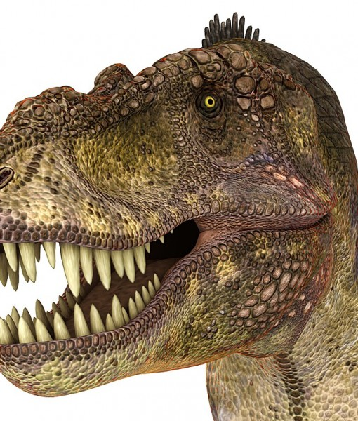 Фотообои Древний мир. Динозавры (ID 9221)