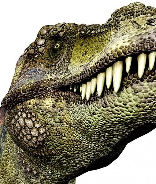 Фотообои Древний мир. Динозавры (ID 9225)
