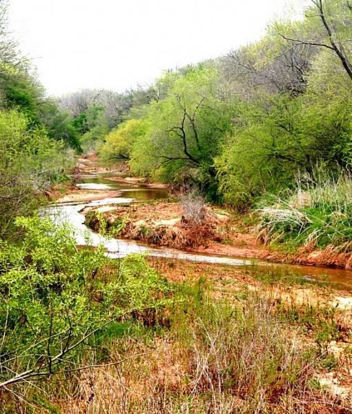 Фотообои Ручей в лесу (ID 15460)
