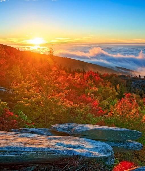 Фотообои Осень в горах (ID 15467)