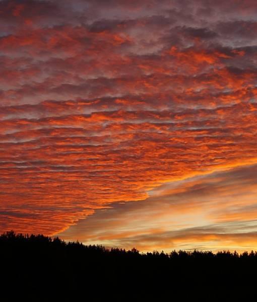 Фотообои Вечернее небо (ID 15474)
