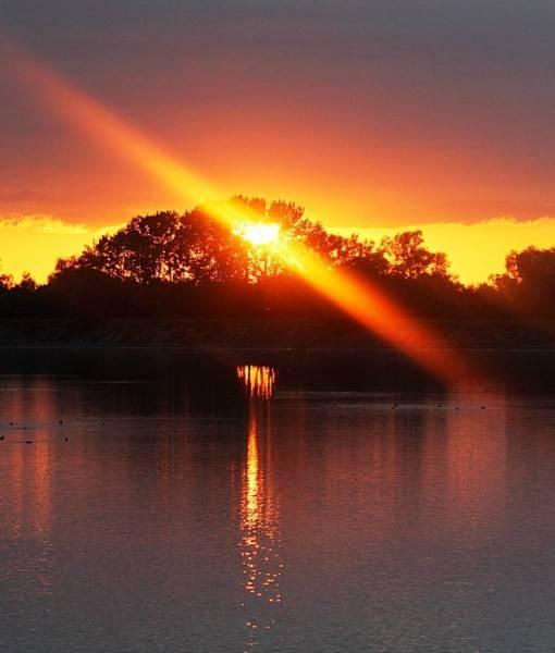 Фотообои В лучах вечернего солнца (ID 15477)