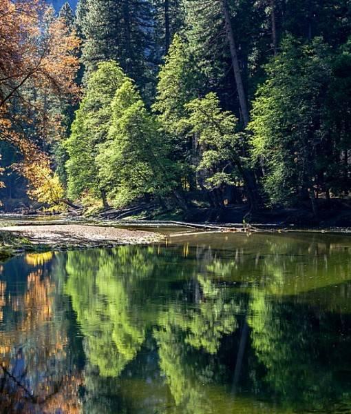 Фотообои У тихой реки (ID 15486)