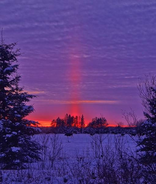 Фотообои Розовый закат (ID 15499)