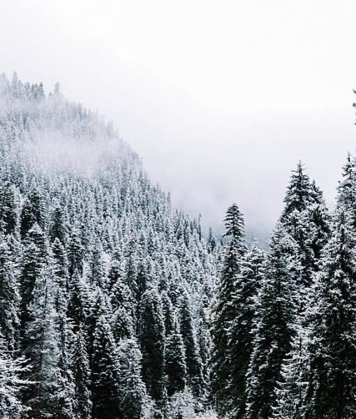 Фотообои Зима в горах (ID 15523)