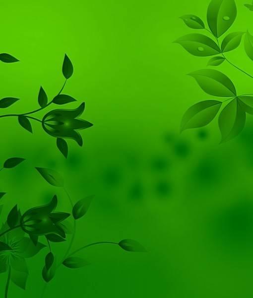 Фотообои Фон листва (ID 16109)