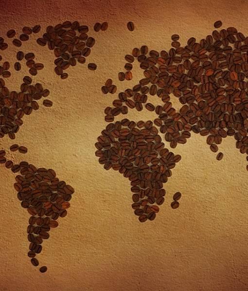 Фотообои Кофейная карта (ID 16705)