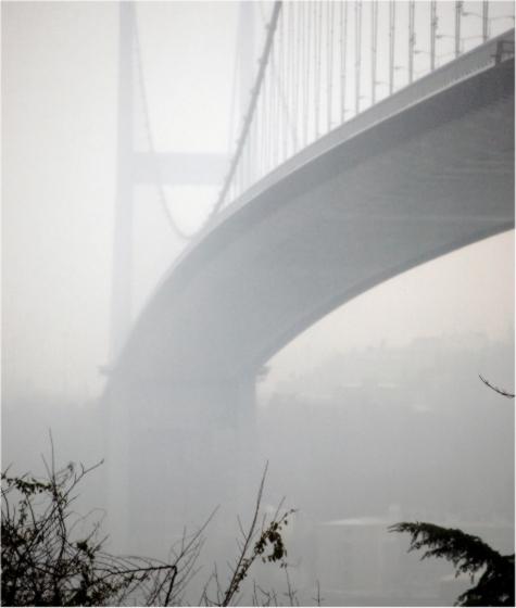 Фотообои Туман (ID 211)