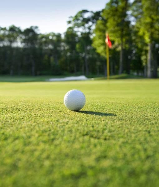 Фотообои Мяч для гольфа (ID 919)