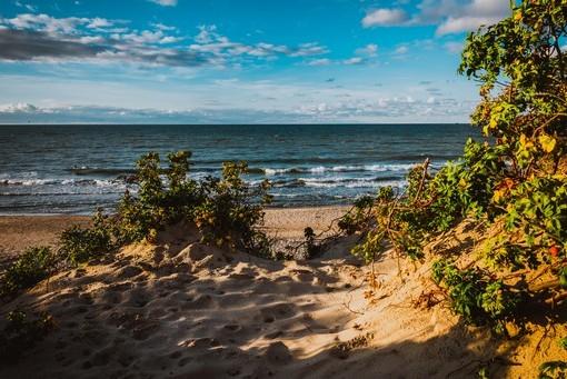 Фотообои Песчаный пляж (ID 3116)