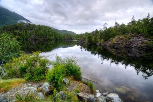 Фотообои У тихой реки (ID 3983)