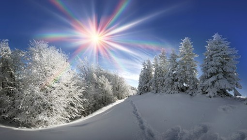Фотообои Зимнее солнце (ID 4363)