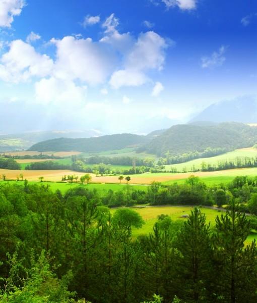Фотообои Вид на долину (ID 4381)