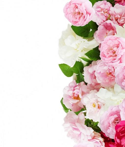 Фотообои орнамент из розовых роз (ID 6571)
