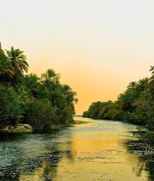 Фотообои Река в тропиках (ID 15430)