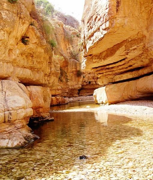 Фотообои Река среди скал (ID 15500)