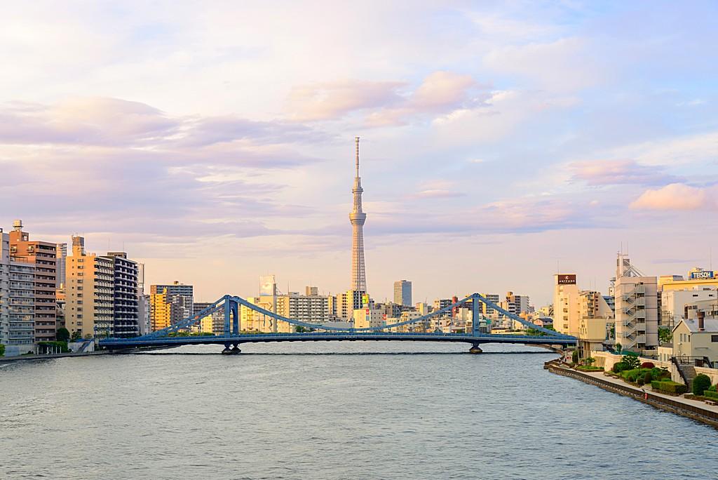 Tokyo Metropolitan Skyline in the Evening